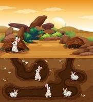 ondergronds dierenhol met veel konijnen vector