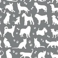 patroon van witte kleuren katten en honden