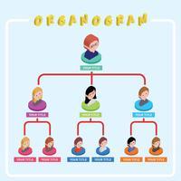Isometrische organogram illustratie vector