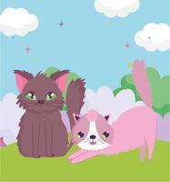 katten die zich uitstrekken en in het gras zitten buiten huisdieren