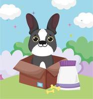 kleine hond in doos met botten en huisdieren