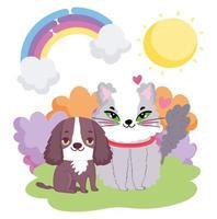 kleine hond en kat zitten in het gras zon landschap huisdieren