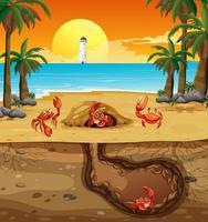 ondergronds dierenhol met veel krabben vector