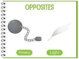tegengestelde woorden met zwaar en licht vector