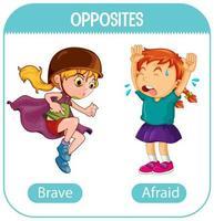 tegengestelde woorden met moedig en bang vector
