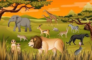 groep wilde Afrikaanse dieren in de bosscène vector