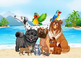 strand openluchtscène met groep huisdieren vector