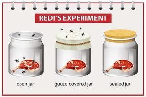 redi's experimentdiagram voor onderwijs vector