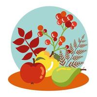 vruchten van de herfst met bladerendecoratie
