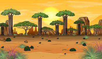 afrikaans boslandschap in zonsondergangtijd vector