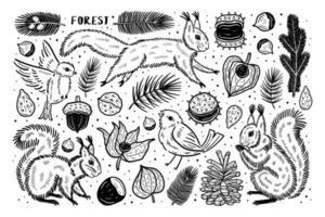 bos set elementen illustraties. dieren natuur planten. eekhoorn vogel pijnboompitten kastanje tak zaad physalis winterkers.