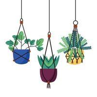 hangende planten in potten vector design