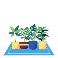 geïsoleerde planten in potten vector design
