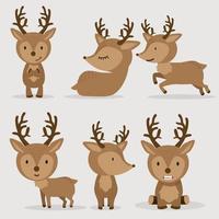 schattige herten in vlakke stijlenset vector