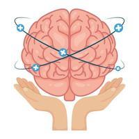 handen die menselijke hersenen met plussymbolen opheffen