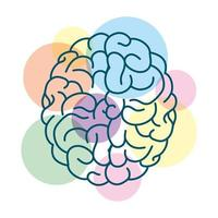 menselijk brein met gekleurde cirkels