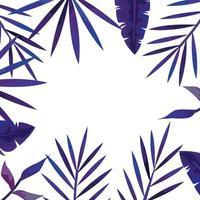 frame van tropische natuurlijke bladeren geïsoleerde pictogram