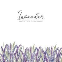 aquarel lavendel bloemen frame vector
