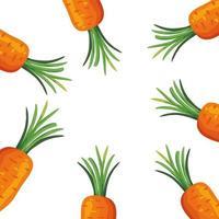frame van verse wortelen groenten