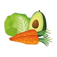 verse wortelen met avocado en sla