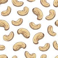 patroon van vectorillustraties op de voedingsthema-reeks van cashewnoten. realistische geïsoleerde objecten voor uw ontwerp.