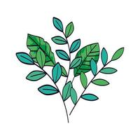 takken met bladeren natuurlijke geïsoleerde pictogram