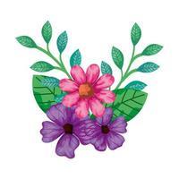 schattige bloemen roze en paarse kleur met bladeren