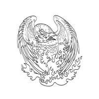 Phoenix mythologische vogel regenereert in brand frontlinie kunst tekening zwart en wit vector