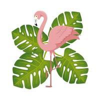 flamingo roze dier met bladeren aard vector