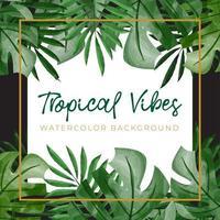 aquarel achtergrond met groene tropische concept vector