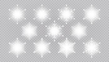 vector grote reeks wit licht sneeuwvlok ontwerpelementen