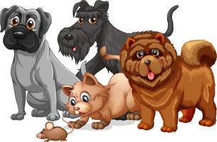 hond en kat in een groep stripfiguur vector