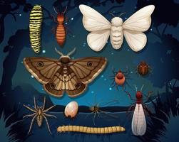 set van verschillende insecten geïsoleerd