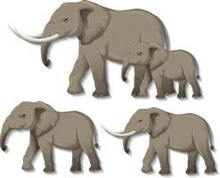 set van geïsoleerde olifanten op witte achtergrond vector