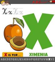 letter x werkblad met cartoon ximenia fruit vector