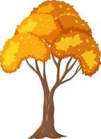 geïsoleerde herfst boom op witte achtergrond vector