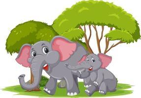 geïsoleerde scène met moeder en jonge olifanten vector