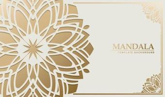 luxe witte mandala achtergrond concept vector