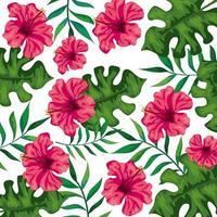 achtergrond van bloemen van roze kleur met takken en bladeren vector