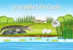 scène met de levenscyclus van een krokodil vector