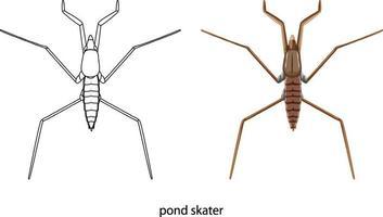 vijver skater in kleur en doodle geïsoleerd vector