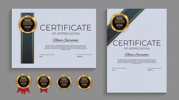 blauw en goud certificaat van prestatie sjabloon ingesteld met gouden badge en rand. award diploma ontwerp leeg. vector illustratie