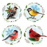 winter vogels ontwerpconcept vector