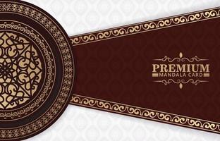 luxe mandala achtergrond met decoratieve frames vector