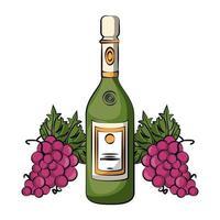 champagnefles met druiven vector