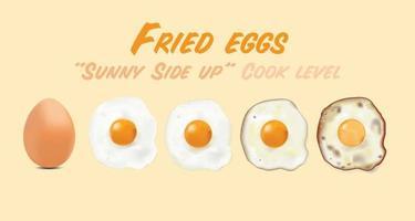 gebakken eieren met rauw ei afbeelding, in basisstijl niveau van gaarheid ingesteld, vectorillustratie op eikleur achtergrond. vector