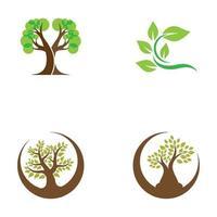 boom logo afbeeldingen ontwerpset