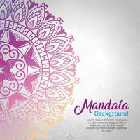 bloemen mandala achtergrond vector