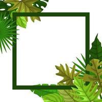 vierkante achtergrond sjabloon met tropische bladrand vector