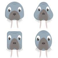 set cartoon walrussen.